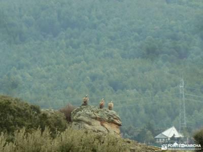 Casa del Bosque,Fortines Buitrago de Lozoya; festividad la almudena ruta desfiladero de la xana